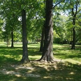 Lone Cedar picnic area