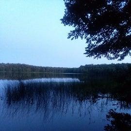 Lake of pines