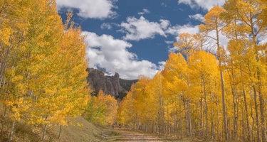 Lodgepole (taylor River Canyon Near Gunnison, Colorado)
