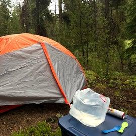 Plenty of established free campsites.