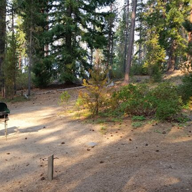 Area adjacent to camping spot.