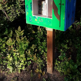 The highlight of the park. A lending library.