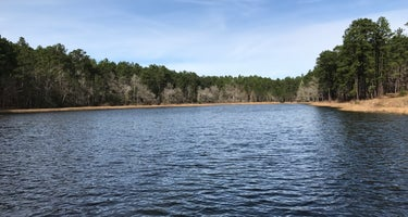 Boykin Springs NF Campground