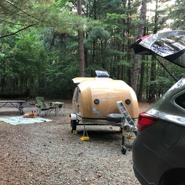 Perfect campsite!