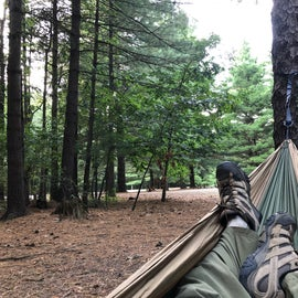 Peaceful place to hammock