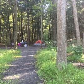 Walk-in camp site 18A