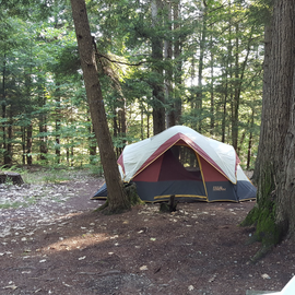 Our campsite, not completely set up yet