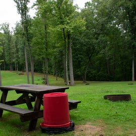 Primitive tent camping in open meadows surrounded by trees