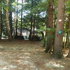 Site 27 Pemi River Campground