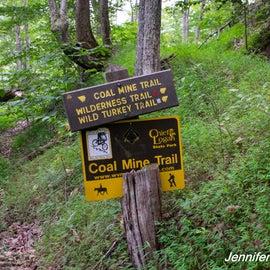 Trails for hiking, biking and horseback riding