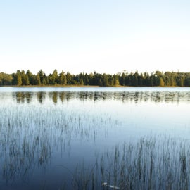 Chickenbone Lake in the morning