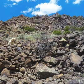 View from the bottom back up the trail.