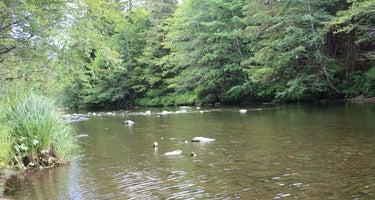 Harris River