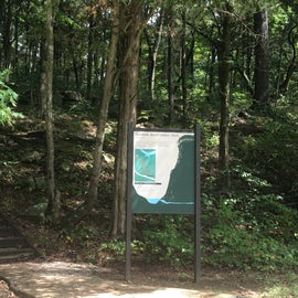 One of the trails on the road to the picnic area( or you can picnic right here)