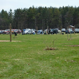 Horse sites with hitching posts.