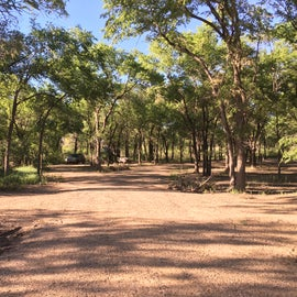 Secluded and wooded campsite section