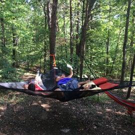 The hammock party area
