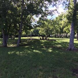 Several picnic spots