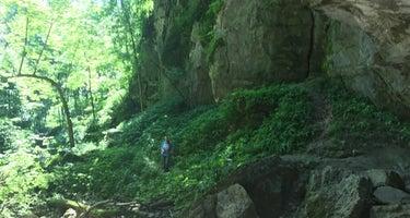 Duttons Cave Co Park