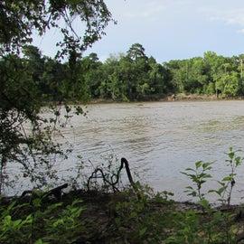 The Altamaha River nearby