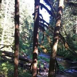 Lost Creek Trail
