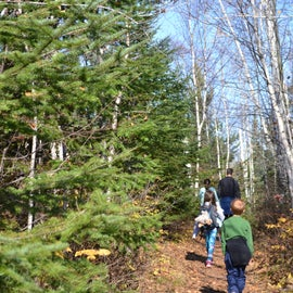 Hike along the Superior Hiking Trail
