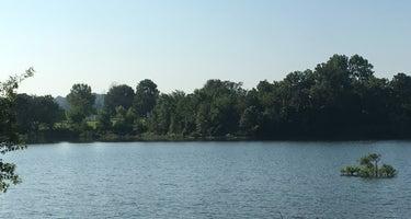 Hickory Creek - Beaver Lake