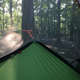 The campsite from the inside of out tentsile hammock tent. Plenty of place there to hang up a hammock.