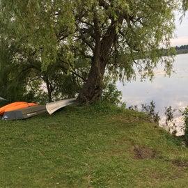 Kayak and boat rental