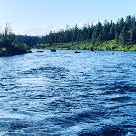 Henry's Fork on the Snake river