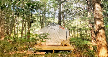 Living Water Campsites: Mossy Acres 1