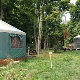 Yurts on the hill are in a grassy setting