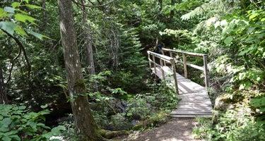 Spruce Creek Campsites