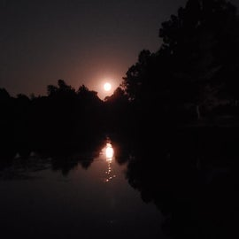 9/14/2019 Blood moon reflecting