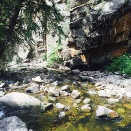 Curecanti Creek alongside the trail