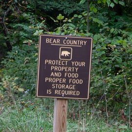 Cranberry Campground is in black bear country.
