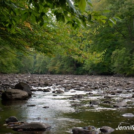 Cranberry River is close-by and so is access to Cranberry Wilderness trails.