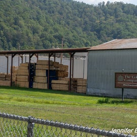 Lumber mill established in 1901 has suffered lots of layoffs.