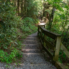 Sample of stairs to access Falls of Hills Creek