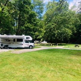 Electric and primitive sites