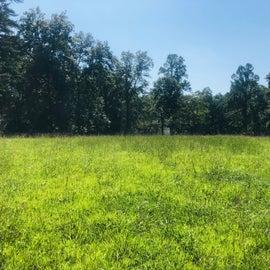 Big field to use
