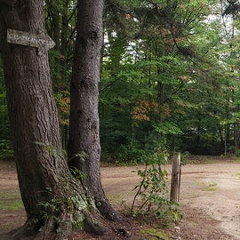 path toward end of pond/airstrip (private)