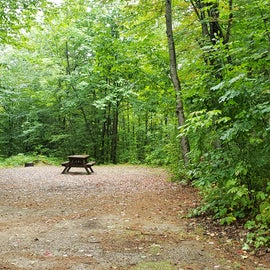 Site 10, wooded site