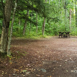 Site 30, wooded site