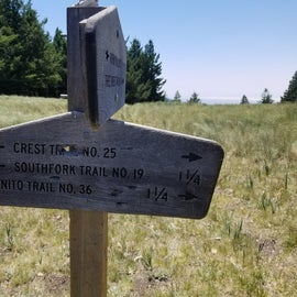 Where Three Rivers Trail intersects the Crest Trail.
