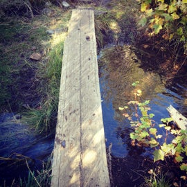 Walking the plank over the stream to the water pump.