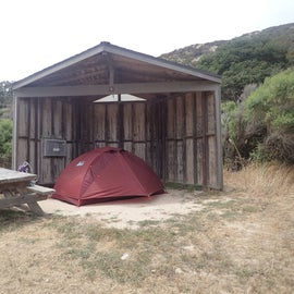 Low profile tent for the win. You can see the fox box built into the wall.