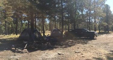 Fr 195 Campground