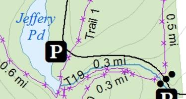 Whaupaunaucau State Forest
