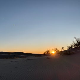 Sunrise at Monahans Sandhills State Park